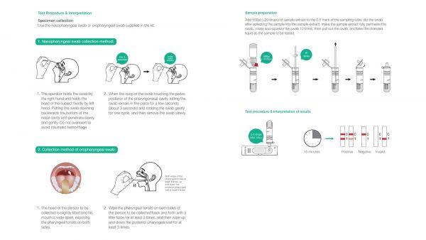 panodyne antigen test kit instructions